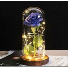 Роза в куполе светящаяся