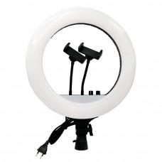 Кольцевая лампа RL-14 (с пультом) 35см