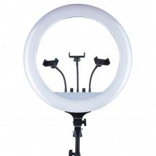 Кольцевая лампа RL-18 (с пультом) 45см