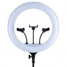 Светодиодная кольцевая лампа YQ-460B 46CM